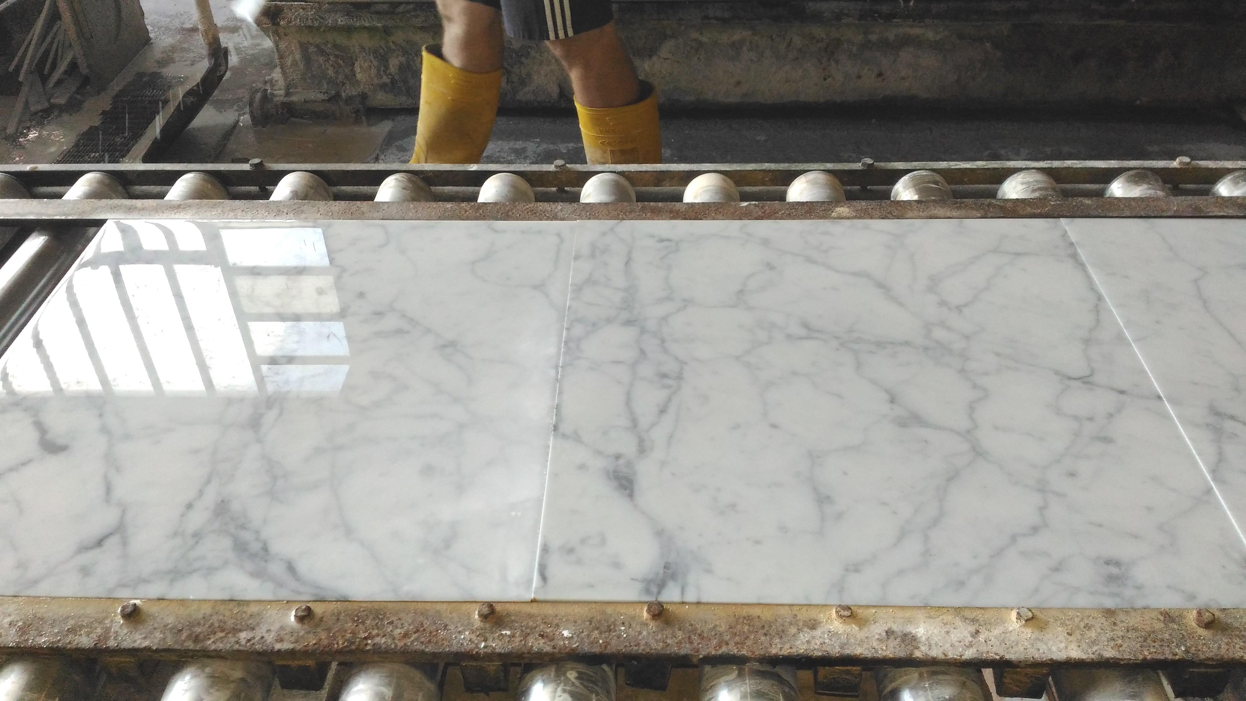 18x18 Carrara